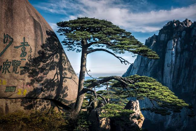 青岛十一旅游推荐-青岛到黄山、千岛湖、西递、宏村、双古街、双飞4日游